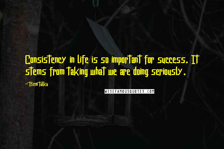 Tsem Tulku Quotes: Consistency in life is so important for success. It stems from taking what we are doing seriously.