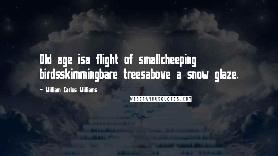 William Carlos Williams Quotes: Old age isa flight of smallcheeping birdsskimmingbare treesabove a snow glaze.
