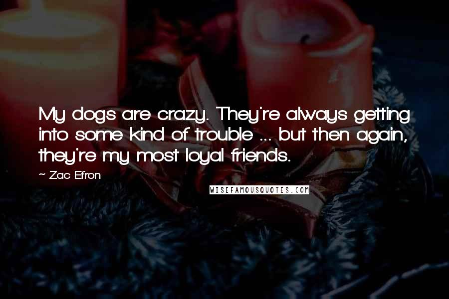 Zac Efron Quotes: My dogs are crazy. They're always getting into some kind of trouble ... but then again, they're my most loyal friends.